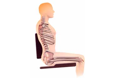 Pelvic & Spinal Postures
