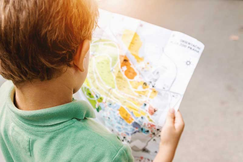 Young child looking at a map