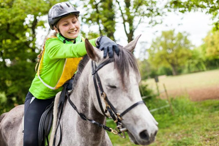 The Therapeutic Background of Equine Therapy