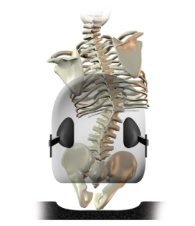 Lateral thoracic support - too low/too shallow